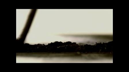 CCTV12忏悔录《折翼》预告片2017年7月16日20:37播出