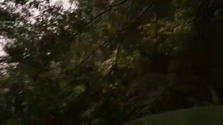 荣耀红白2 莫名枪击险引爆惊悚丛林战