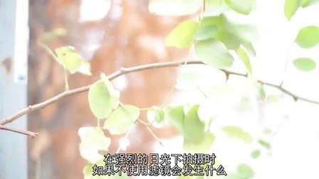 【电影自习室】单反拍片指导-使用中性灰度滤镜_高清