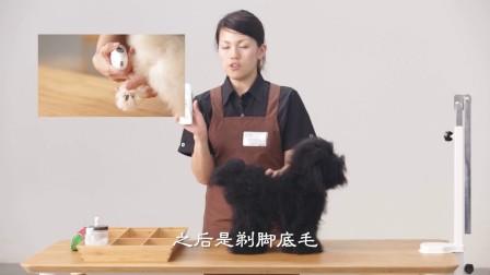 永旺宠物美容培训第一季第十七集