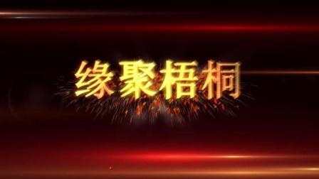 深圳中湾电子股份有限公司授牌仪式视频
