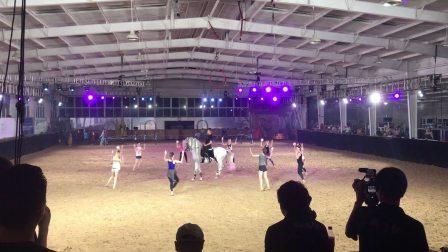 特洛伊城的庆典,人与马和谐共舞