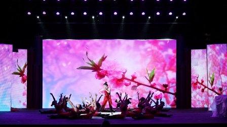 9.舞蹈 《 桃花红杏花白 》