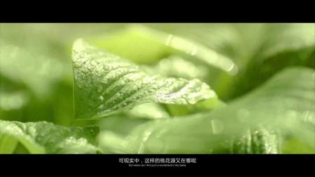 国寿嘉园苏州项目介绍之(苏州阳澄湖)