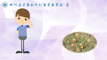 野生蘑菇中毒宣传短片