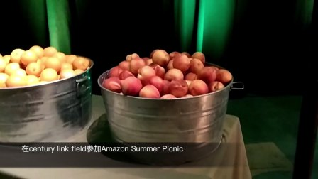 #5 Amazon Summer Picnic+Haiku自助餐 30 Videos in 30 Days