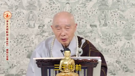 2014净土大经科注475_简体字幕_标清