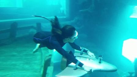 哈威水中飞翼H2,浮游、潜水、冲浪神器!- 远到近+旋转+m