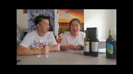 【美酒惠特别节目】紫尚葡萄酒——宁夏贺兰山东麓红寺堡产区, 北纬38°的荣耀……