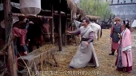 《穆桂英挂帅》这两夫妻的玩乐趣事真心佩服,竟搞现场母马配种