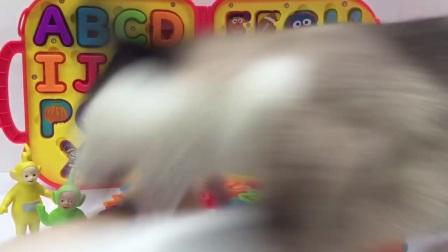 天线宝宝seseme街ABC信盒玩具!