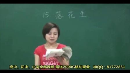 人教语文5上-落花生_3D2D人教版五年级语文上册 王琛 名师课堂 【全24讲】