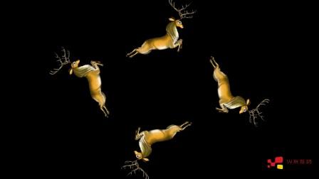 3d全息立体投影动物类素材合集