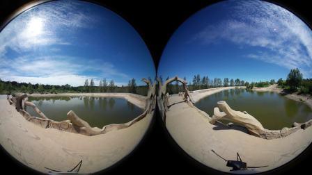 风水山植物园 360全景视频