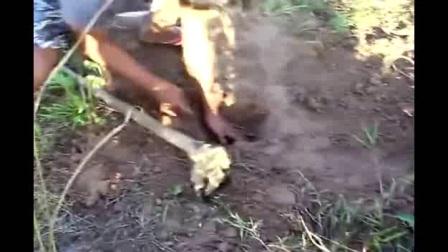 男子下地干活,发现土质异样,扒开后,整个人