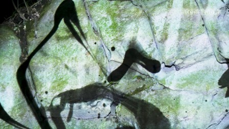 Rock Wall Spatial Calligraphy, Continuous Life - Five Hundred Arhats