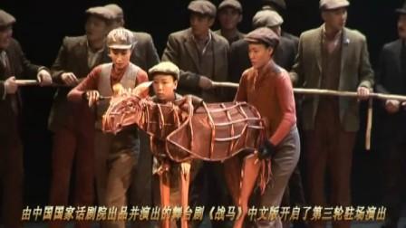 国话众明星观看舞台剧《战马》中文版北京第三