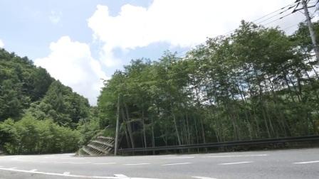 铃木GSX250R日本试乘测试