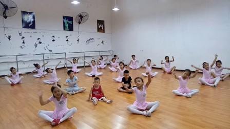 中国舞二级《爱睡觉的咖啡猫》糖宝舞蹈培训2017暑期
