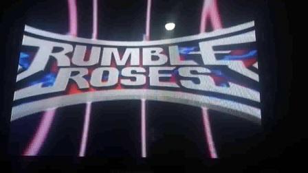 PS2搏击玫瑰惨败被虐