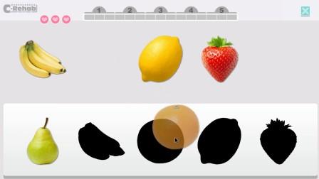 CRehab电脑复康训练游戏 - 如影随形<水果篇>