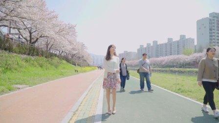 REVERSE BUSAN (釜山的春天, 釜山旅游)