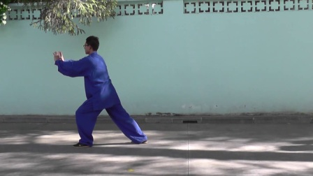楊大衛傳統楊式太極拳八十五式背向演練