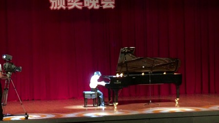 2017全国钢琴比赛金奖