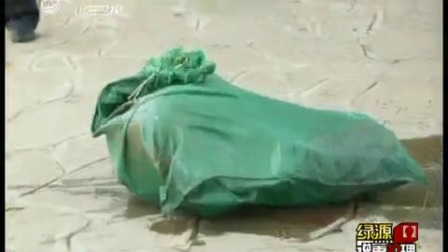 【说事拉理2010】碎尸案背后的家庭悲剧