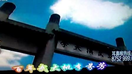 武汉话《一家老小向前冲》_高清