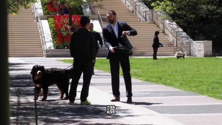 [K分享] 社会实验;10万美金买你的爱犬,你会?(中文字幕)