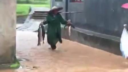 街头抓大鱼