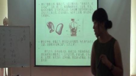 中医五行--脾视频课程