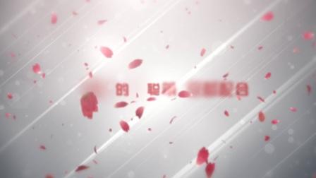 AE0313-唯美浪漫爱情表白求婚婚礼开场视频制作AE模板-字幕类