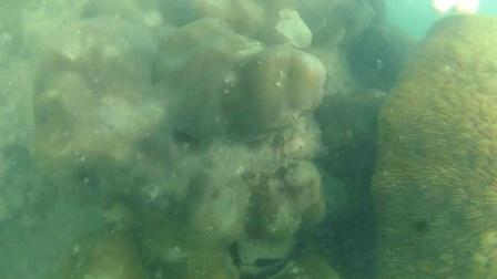 第一次深潜