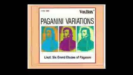 Jerome Rose Plays Liszt 6 Grand Etudes of Paganin(3) la campanella杰罗姆·罗斯演奏李斯特——钟