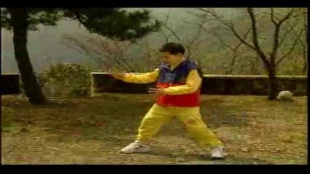 85式杨式太极拳 杨式太极拳教学