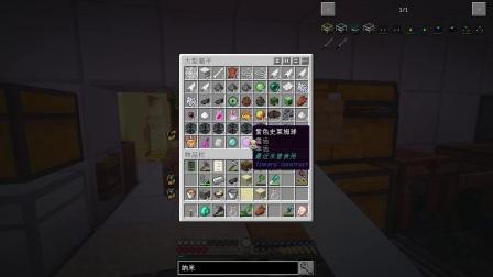 【大橙子】荒漠求生日记#17豪华兔子窝[我的世界Minecraft]