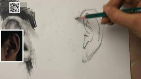 3简单油画教程图片大全,初学者速写教程视频,静物素描教程 结构如何学素描