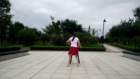 嘉祥县山水家园广场舞双人舞《蝶恋花》