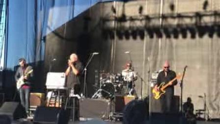 Charlie Musselwhite @ Blues Festival, Woodinville WA, 07_30_2017