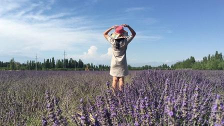 旅行——《伊犁哈萨克自治州》2017年7月