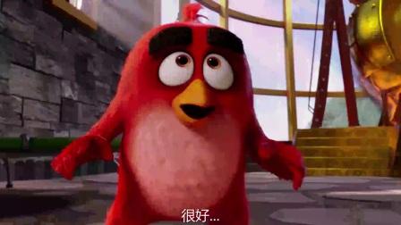 愤怒的小鸟 粤语版  无敌神鹰变护蛋大使 炸弹黑猛爆炸