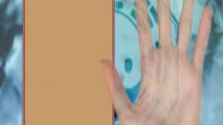 奕道--小小指纹秘密多