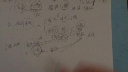中医基础藏象学之六腑:小肠(小便混浊,尿频,大便糖稀等)