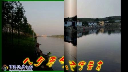 2017年8月中国钓具之都论坛会员帖图视频集锦