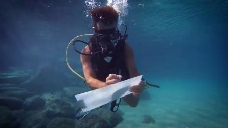海外实拍/创意表白生日礼物惊喜/水下举牌内容定制图片视频祝福