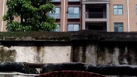 video_20170908_115223西平县人民医院病房楼后门