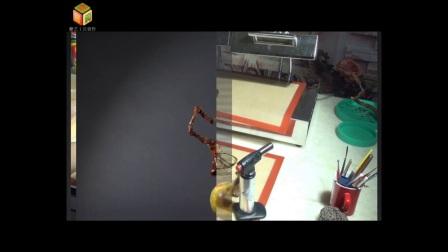 张家清糖艺视频教程-傲雪寒梅 糖艺制作 糖艺工具 拉糖自学教程 周毅食品雕刻