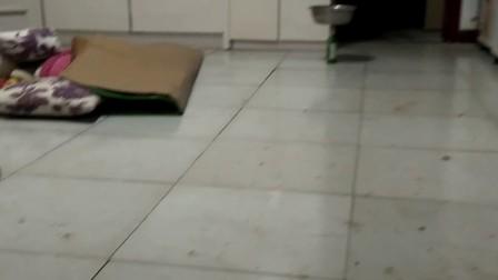 济宁市兖州区2017年9月10号,夜里22点41分,3.6级地震